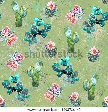 Cactus colorful watercolor illustration print pattern