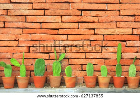 cactus in flowerpot on classic orange brick wall for home interior and exterior decor or modern architecture background with copy space