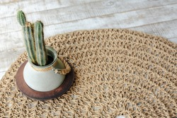 Cactus in pot on Jute Twine round Mat rug on rustic wooden background eco style with green plant. Knitted at home decoration concept