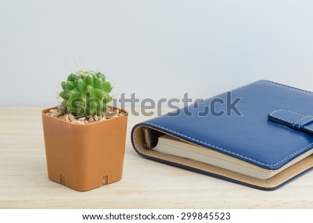 Cactus in vase decor  with a book for decorated over wooden background