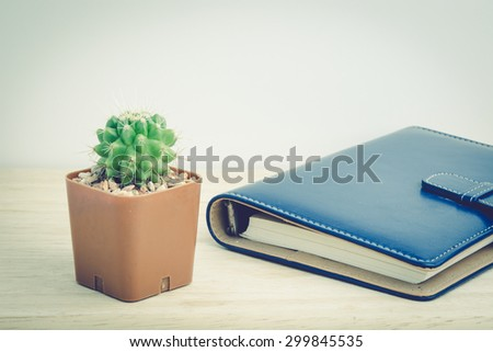 Cactus in vase decor  with a book for decorated over wooden background,  vintage tone