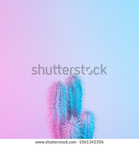 Cactus in vibrant bold gradient purple and blue holographic colors. Concept art. Minimal surrealism.