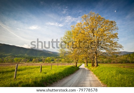 Cade's Cove Dirt Road Hyatt Lane on Spring Morning in Great Smoky Mountains National Park