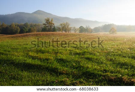 Cades Cove fields, forests and hills