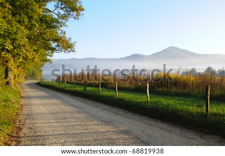 Cades Cove road in fog at sunrise
