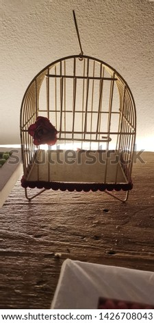 Cage of bird without bird #1426708043