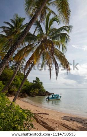 Cairú, Bahia / Brazil - 10/03/2015: Moreré Beach, a tropical scene on Boipeba Island #1114750535