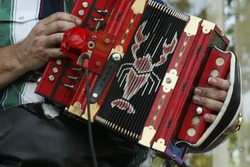 Cajun Hands Playing an Accordian