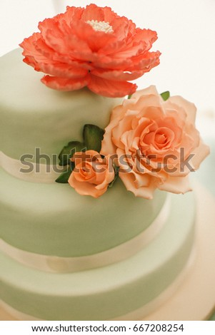 Cake decoration #667208254