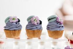 cakes. capcakes. purple cakes. sweet table. candy bar. purple capcakes