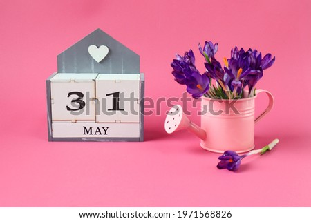 Calendar for May 31: a cube with the number 31, the name of the month of May in English,a pink watering can with a bouquet of purple crocuses on a pink background Zdjęcia stock ©