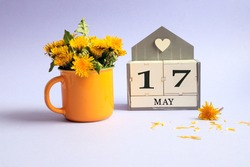 Calendar for May 17: cubes with the number 17, the name of the month of May in English, a bouquet of dandelions in a yellow cup on a light background