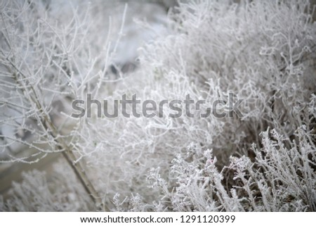calendar picture with frozen field in cold weather. German Wintertime.