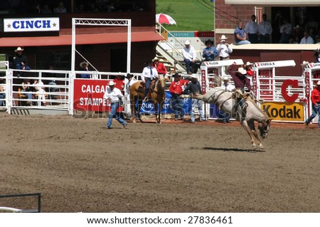 CALGARY, CANADA – CIRCA JULY 2004 : Cowboy rides bucking bronco at Stampede Parade Calgary Alberta, circa July 2004 in Calgary. The first event was inaugurated in 1912 by American Guy Weadick.