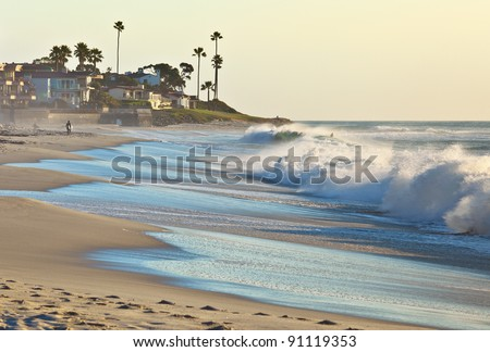 California Beach and Palm Trees San Diego, California #91119353