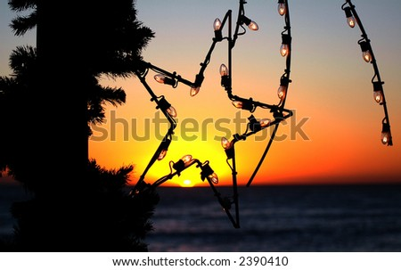 California Christmas - stock photo