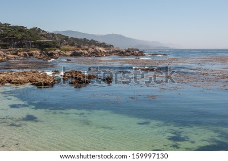 California Coast in Monterey