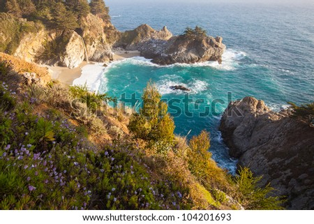 California coast in spring - Mcway falls with wild flower