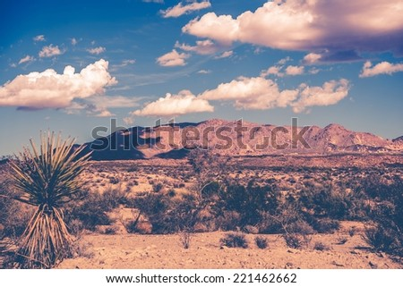 California Summer Desert Theme Vintage Color Grading. Southern California