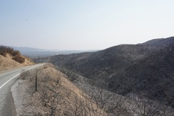 California 2020 wildfire season desolation