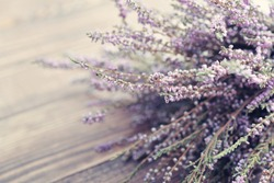 Calluna vulgaris (known as common heather, ling, or simply heather) on wooden background closeup