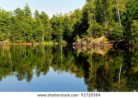 Calm and reflective cove on a freshwater lake in Northern Maine
