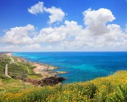 Calm blue sea landscape. Stony seashore. Bright yellow flowers grow on rocky cliff. Sunny seascape with impressive blue sky and  bizarre clouds.  Rosh HaNikra or Hanikra, Mediterranean, Israel