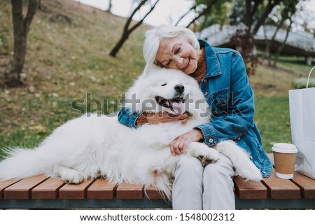 Calm granny hugging her fluffy pedigree dog stock photo