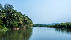Calm Green River - India