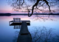 Calm Lake at Sunset, Wooden Pier with Bench under a Bare Tree
