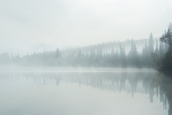 Calm lake in mist the in the morning, minimalism