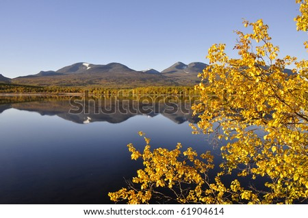 Calm lake reflection in autumn