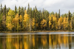 Calm lake surface and autumn forest on background