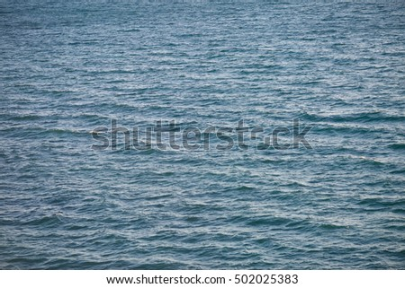 Calm sea surface with nobody. Nature background #502025383