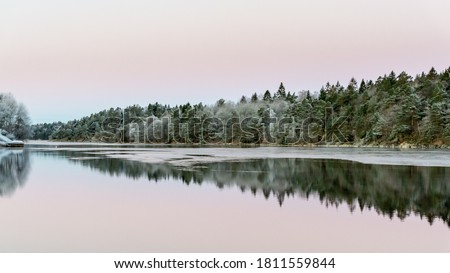 Calm water and reflections from trees and sky. Beautiful silence morning at sunrise, dawn in early winter. Pink colored sky as background, place for text, copy space. Сток-фото ©