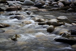 Calm water stream around the rocks at a canyon of Lynn Valley, British Columbia, Canada.