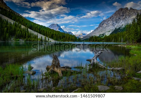 Calm waters with reflections at Elbow Lake Alberta under cloudy early evening summer sky surrounded by mountains, trees with rocky shoreline and logs and stumps in water.  #1461509807