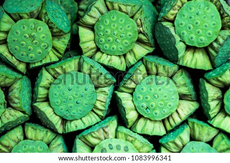 Calyx green raw, Lotus Seed, Beautiful nature texture background