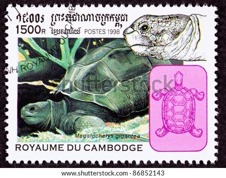 CAMBODIA - CIRCA 1998:  A stamp printed in Cambodia shows an Aldabra Giant Tortoise, Geochelone Gigantea, circa 1998.