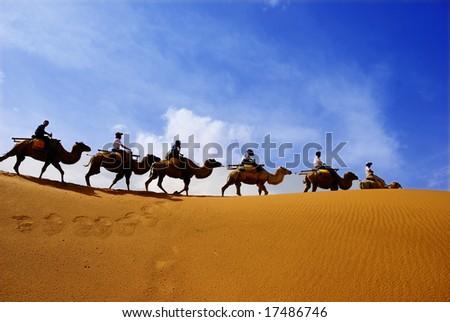 Camel caravan going through the sand dunes in the  Desert(2)