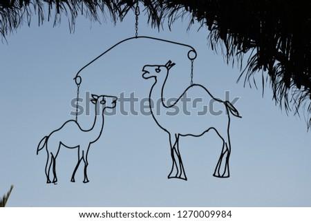 Camel contours 1 #1270009984