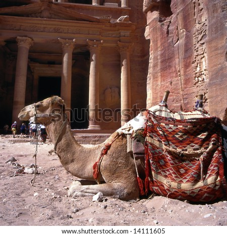 Camel in front of Treasury Petra Jordan.This is an UNESCO World Heritage site