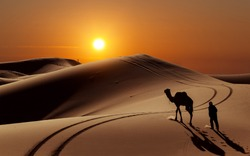 Camel with herdsman in the Sahara desert, Morocco