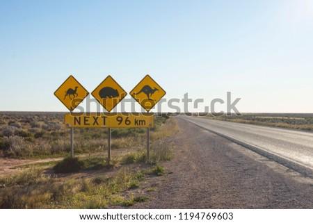 Camel, Wombat and Kangaroo crossing signs in Australia #1194769603