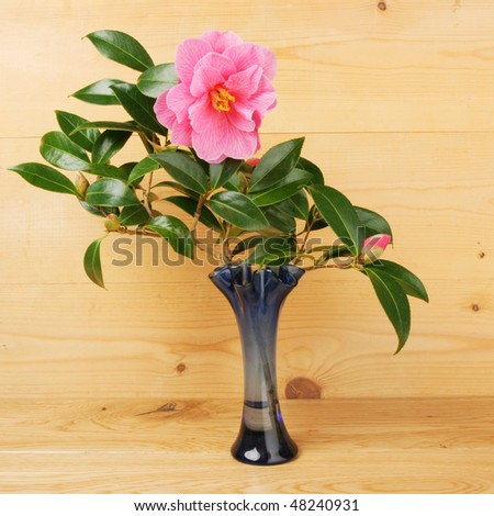 Camellia flower and bud in a vase against a wooden background - stock photo