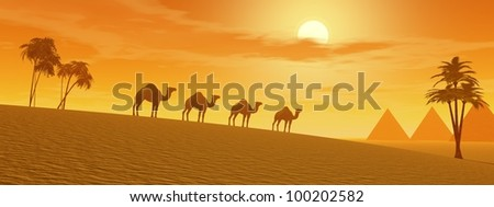 Camels walking in the desert between palmtrees and towards pyramids by sunset