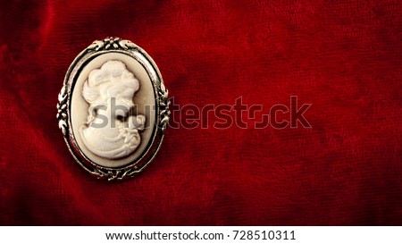 Cameo brooch representing the side portrait of a woman carved in white stone or ivory with golden elements on burgundy red velvet with copy space #728510311