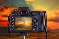 camera backside in natural context