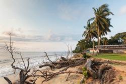 Cameroon, South Region, Ocean Department, Kribi beach, coastline erosion