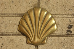 Camino shell on the pavement in Northern Spain near Gijon